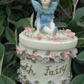 fairy 004