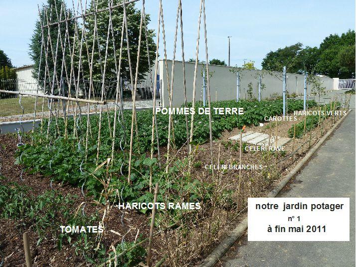 jardin n°1 fin mai 2011