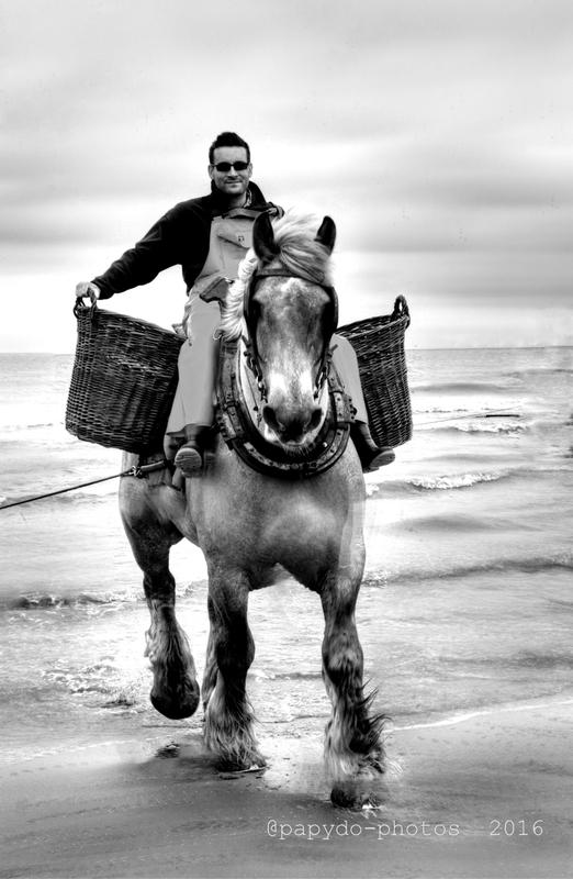 oostduinkerke pêcheurs a cheval