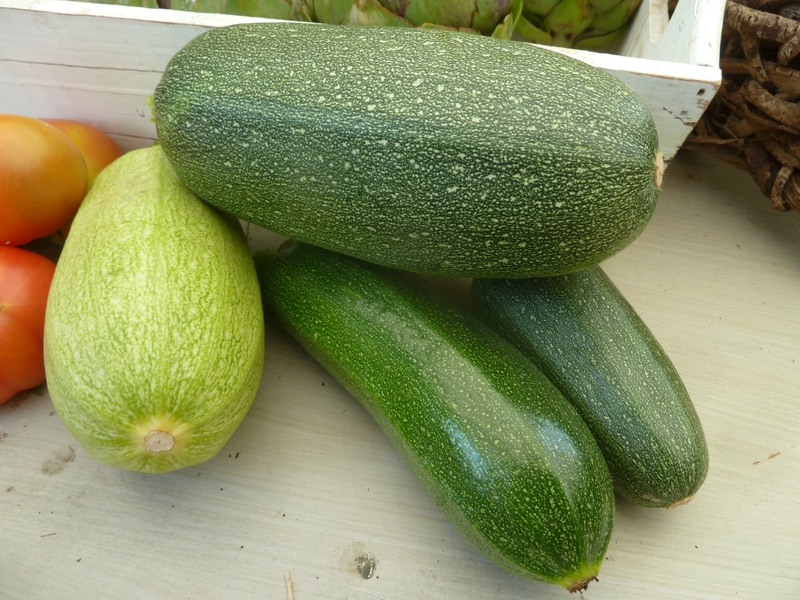 23-courgettes