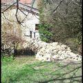 Monolithe dans mon jardin