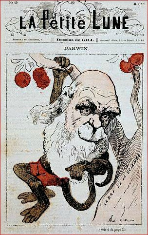 darwin-as-monkey-on-la-petite-lune