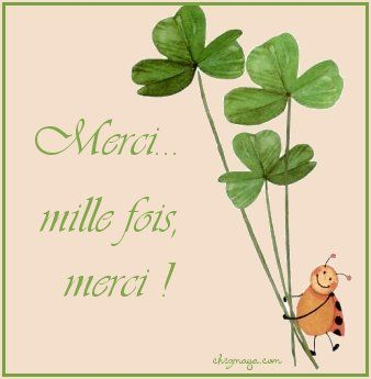 mille_merci