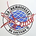 La langoustine : la demoiselle de loctudy !