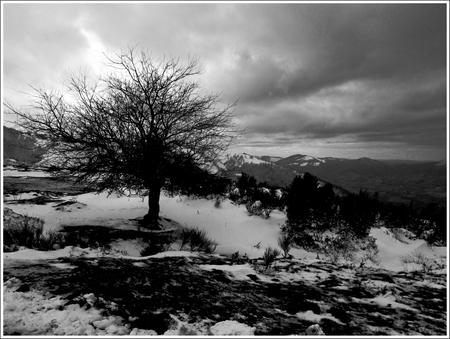 20130120_Prat-Albis_Chopperrette