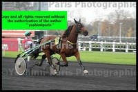 Master Grand National du Trot Paris-Turf 6 decembre 2015,heat,Unice de Guez,copie blog,©Yoshimi-Paris Photographie,I7D_6612 (5)