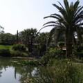 jardin Servian 009