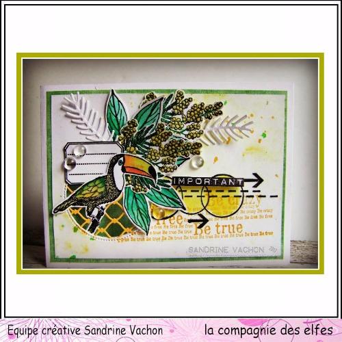 Sandrine VACHON Oct LA COMPAGNIE DES ELFES (1)