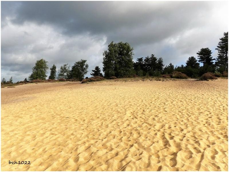 dunes 6