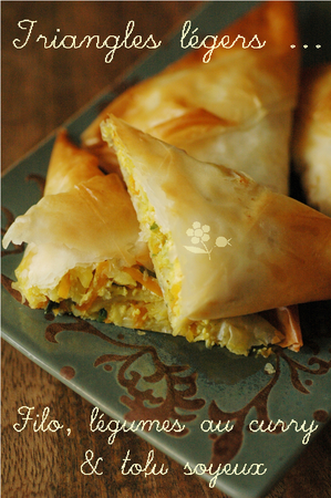 Triangles_filo_aux_legumes__curry___tofu_soyeux_1