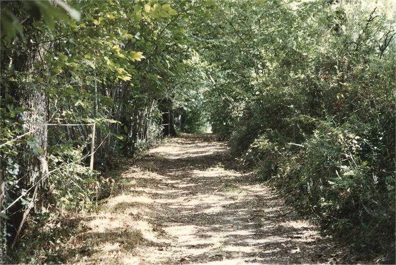 piste forestière à Réjaillac
