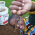 Djenbé et le ver de terre