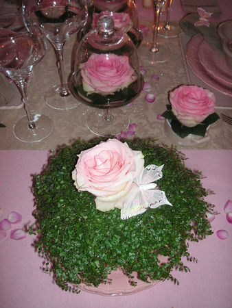 table_rose_f_te_des_m_res_023