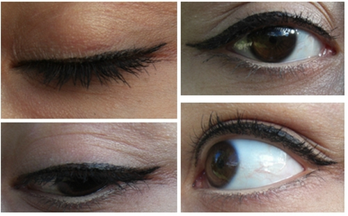 Eye liner liquide 1 elf princesse affreuse (2)