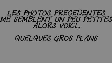 2010_09_05_book14