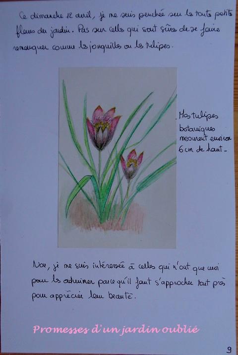 Le cahier du Jardin Oublié n°3