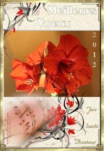 carte-bonne-annee-2012-meilleurs-voeux-2012-29-d-clics-disa