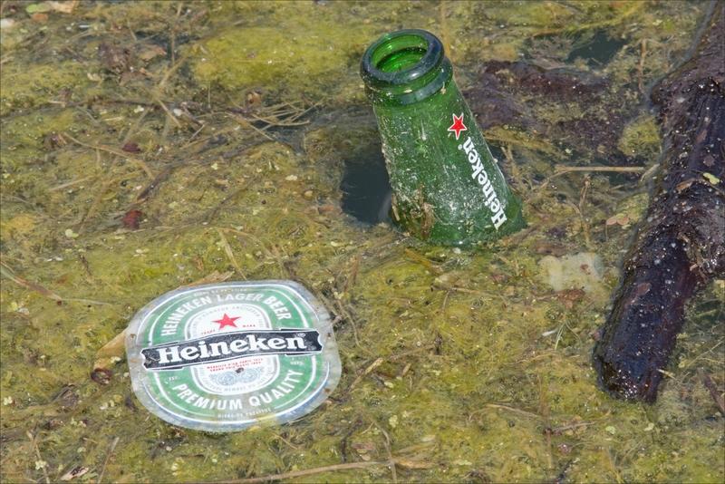 ville déchets bouteille bière étiquette flotte 300517