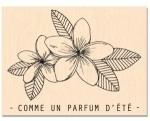 RDV_au_soleilt_-_VISUEL_parfum_detered_s