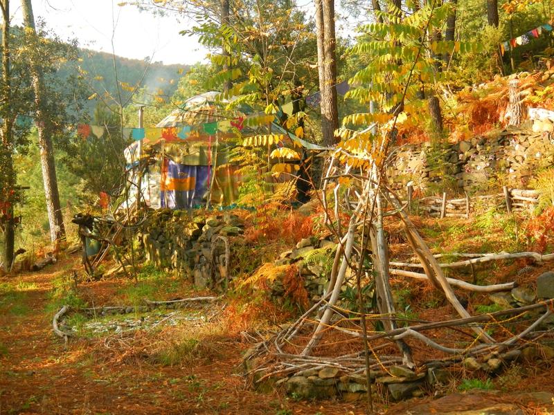 dans la lueur d'automne yourte yurtao
