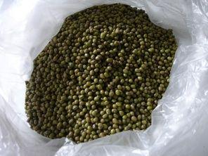 Le soja et ses produits dérivés