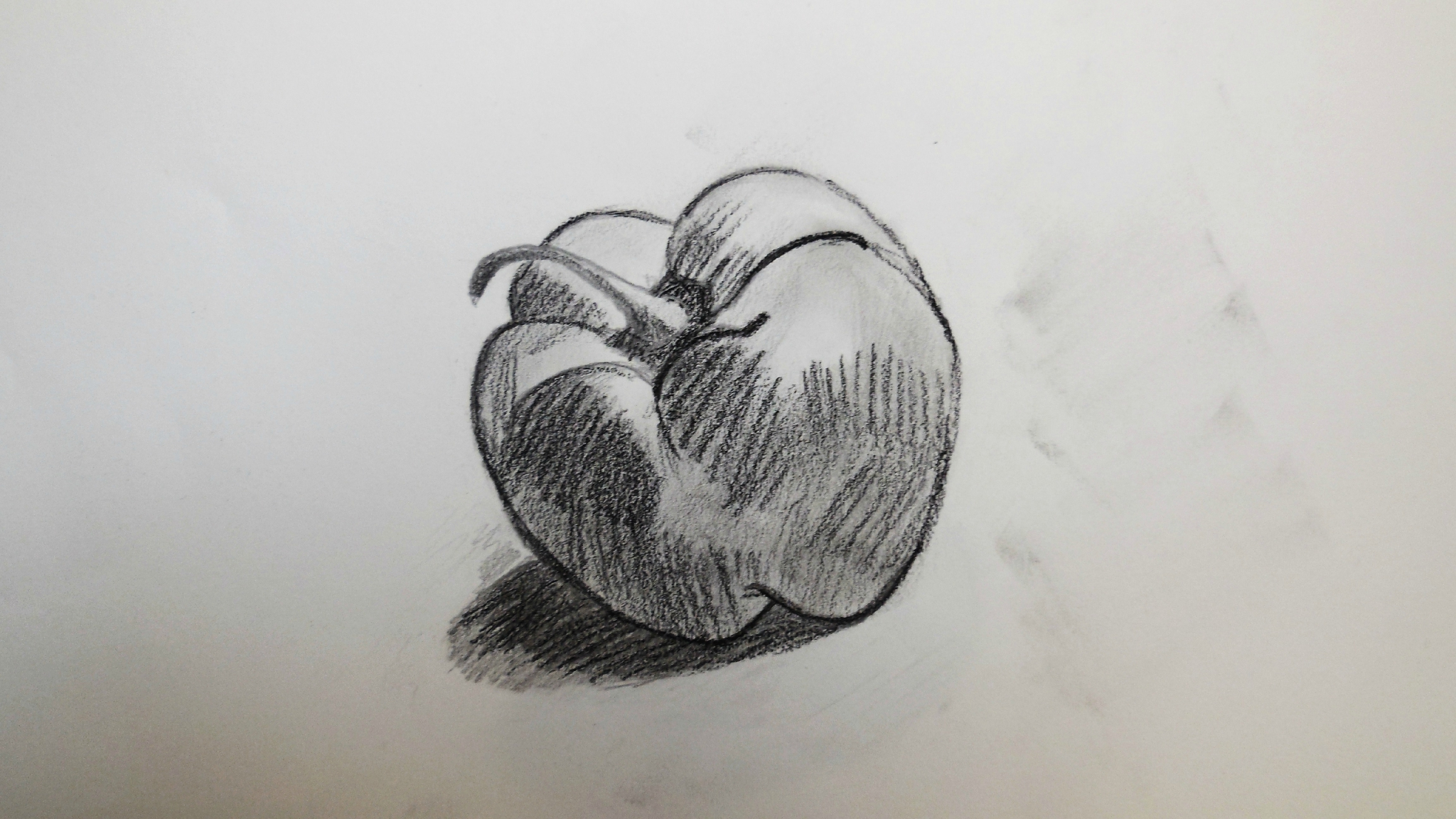 Un poivron charlotte 39 s drawings - Dessin nature morte ...