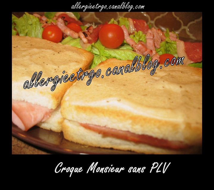 allergieetrgo croque monsieur