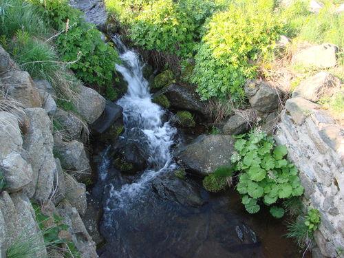2008 05 23 Un ruisseau qui coule