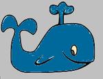 baleinebleue