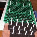 2009 03 13 Mes premiers semis de l'année