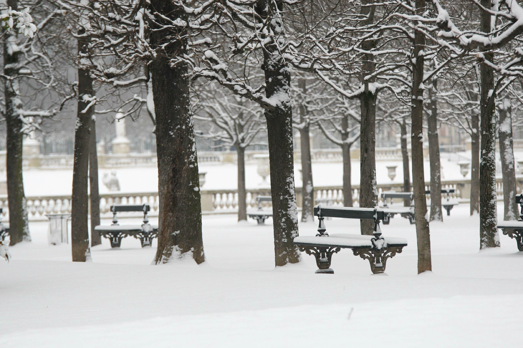 Paris sous la neige. © Photo Michel Stoupak. Sam 19.01.2013, 09:28.