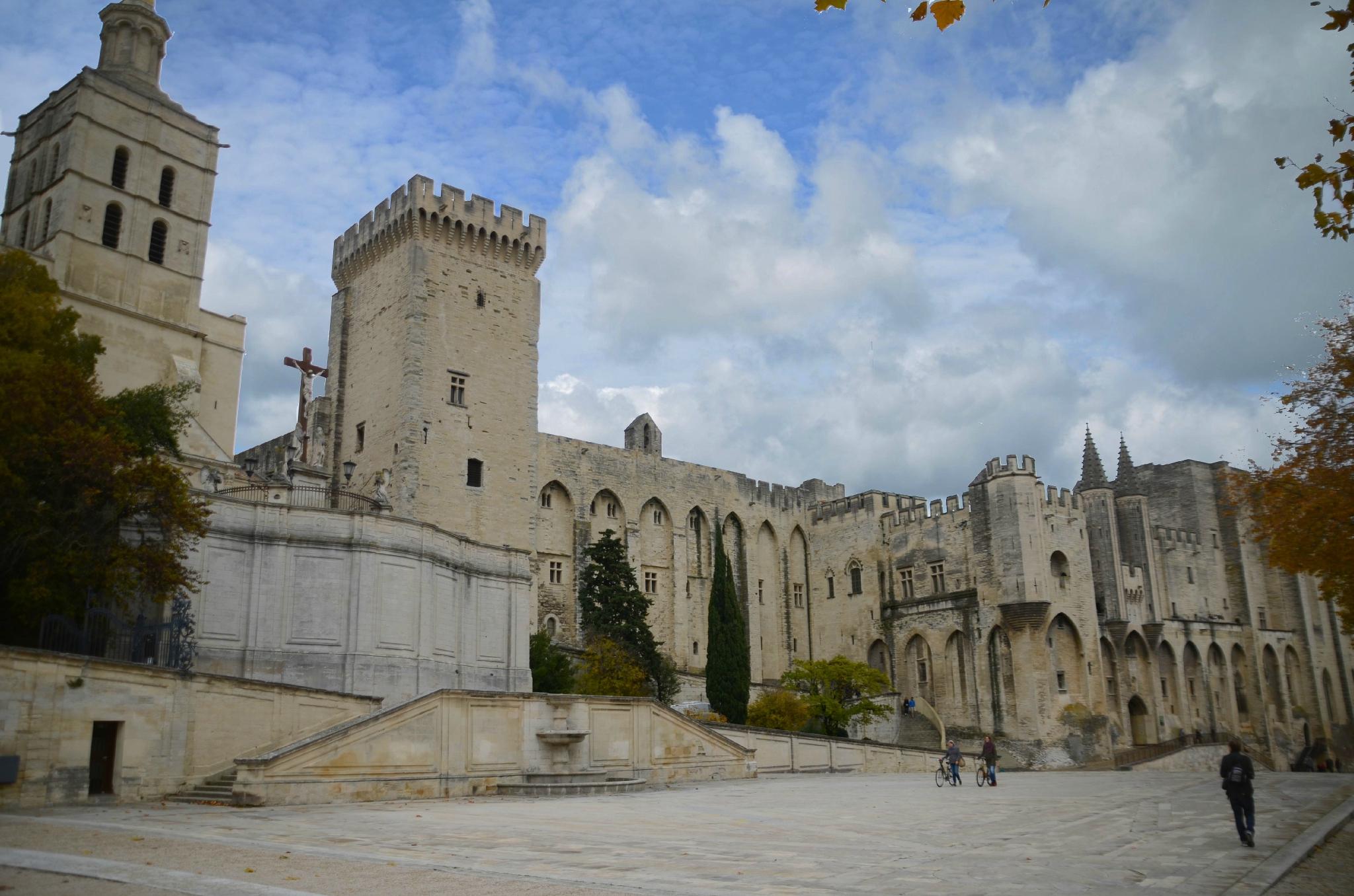 Palais des Papes : cathédrale d'Avignon