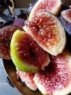 FIGUES_5