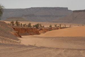 Mauritanie2005__075