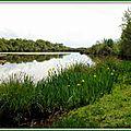 Lac Azur 25041521