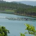 Lac Tuyen Lam, Dalat