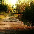 IMG_6438 R1 Ronquières le vieux canal