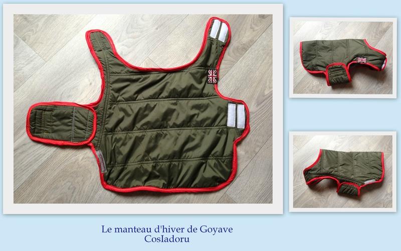 le manteau d'hiver de Goyave3