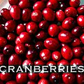 °chutney cranberries et gingembre°