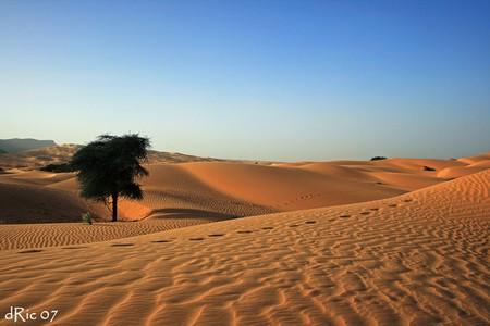 mauritanie_21412