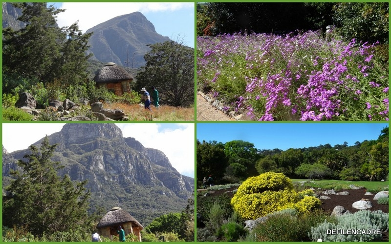 2017-10-09 jardin botanique8