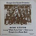 The temple city kazoo orchestra, some kazoos, rhino rec., lp, 1978