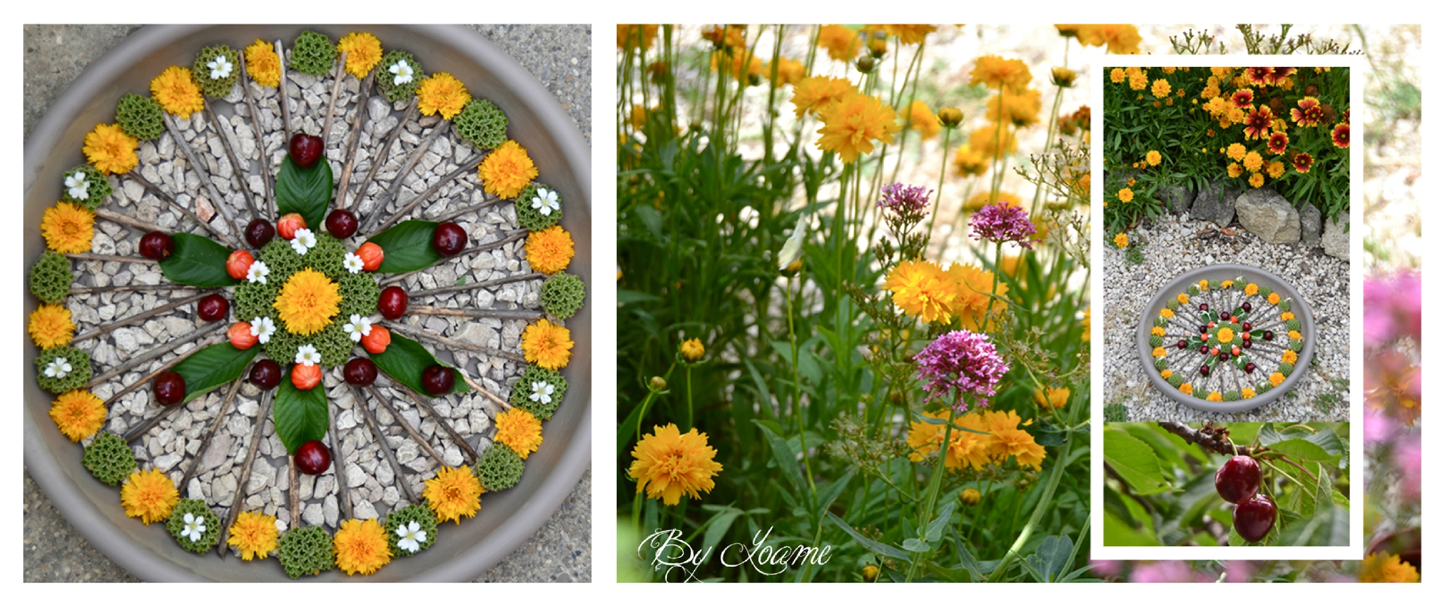 Jardin gourmand photo de mandalas des jardins au for O jardin gourmand toulouse