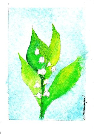 muguet bleu_0002