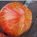 12 - tomate feuerwerk - www.passionpotager.canalblog.com