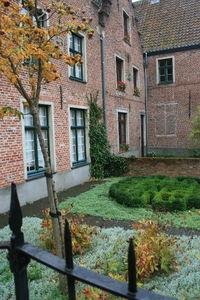 Belgique_Nov_2010__69_