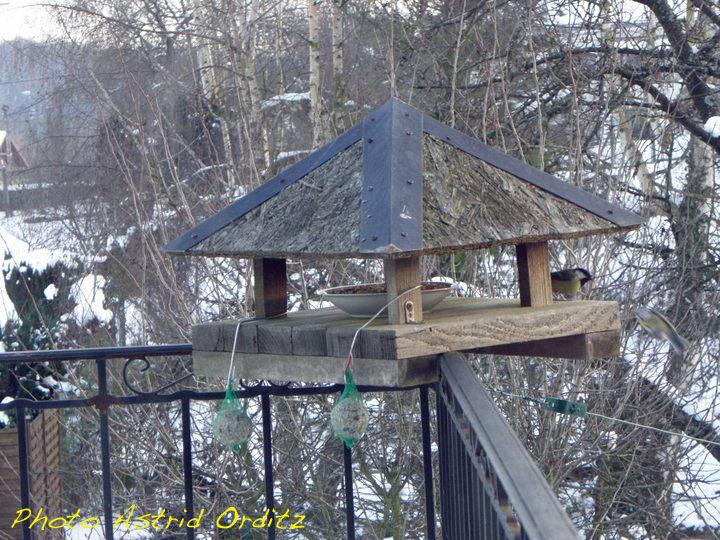 Pourquoi installer une mangeoire pour oiseaux au jardin le jardinoscope toute la vie - Mangeoire pour oiseaux du ciel ...