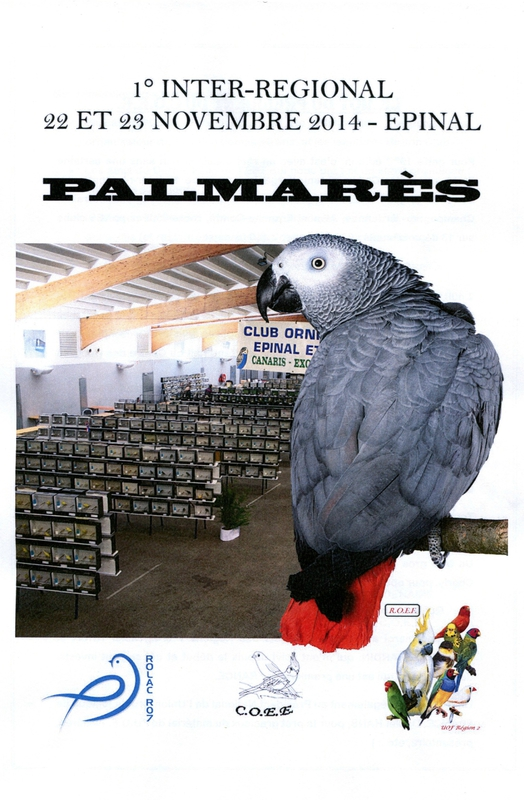 PALMARES EPINAL 1