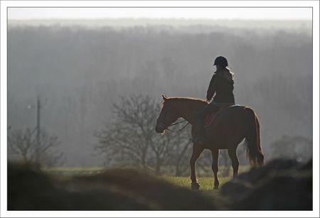 plaine lulu cheval 1 190212
