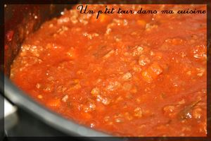 Sauce_spaghetti2